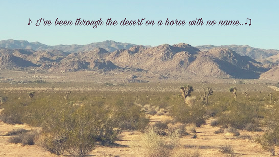 ♪ I've been through the desert on a horse with no name..♫
